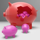 Piggybanks Inside Piggybank Showing Saving Stock Photos