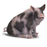 Piglet. Rendering of a young pig with Clipping Path and shadow over white Royalty Free Stock Images