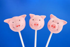 Piglet cake pops Stock Photos