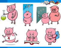 Piglet character student cartoon set Royalty Free Stock Photos