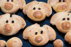Piglet cookies Royalty Free Stock Images