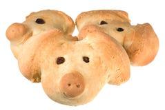 Piglet cookies Stock Image