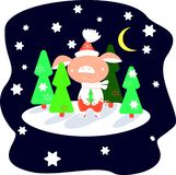 Piglet in red pants in a winter forest on a starry night among green Christmas trees