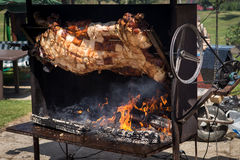 Piglet roasted on a spit Royalty Free Stock Images