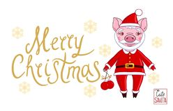 Piglet in the role of Santa Claus in a festive attire stock illustration
