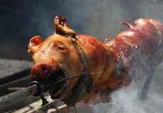 Piglet on a spit Royalty Free Stock Photography