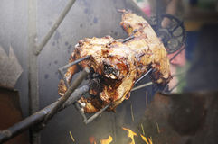 Piglet on a spit Royalty Free Stock Photos