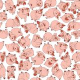 Piglets. Christmas vector postcard. Vector seamless pattern. Piglets. Christmas vector postcard. Farm in the village. Agriculture. Year of the pig. Vector stock illustration