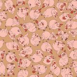 Piglets. Christmas vector postcard. Vector seamless pattern. Piglets. Christmas vector postcard. Farm in the village. Agriculture. Year of the pig. Vector royalty free illustration