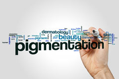 Pigmentation word cloud royalty free stock photo