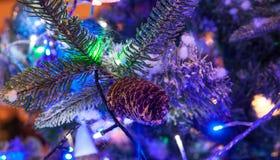 Pigna dell'albero di Natale Fotografie Stock Libere da Diritti