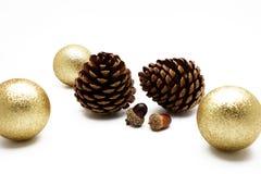 Pigna e ghianda con l'ornamento della palla dell'oro su fondo bianco Immagine Stock