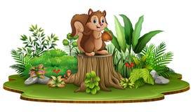 Pigna felice della tenuta dello scoiattolo del fumetto e stare sul ceppo di albero con le piante verdi illustrazione vettoriale