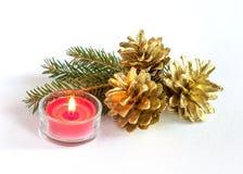 Pigne e candela Fotografia Stock Libera da Diritti