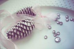 Pigne sul nastro bianco del whith del piatto, decorazione di purezza Immagini Stock
