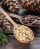 Pignons dans le cône de pignon de cuillère et sur la table en bois Aliment biologique photos libres de droits