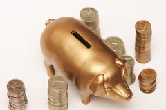 Pigpy Bank and Coins Stock Photography