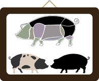 Pigs Royalty Free Stock Photo
