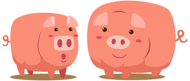Pigs. Illustration of isolated cartoon pigs on white background Royalty Free Stock Images