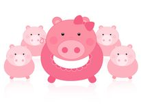 Pigs royalty free illustration