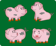 pigs stock illustrationer