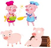 Pigs Royalty Free Stock Images