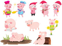 Pigs. An illustration of pigs doing different things Stock Photo
