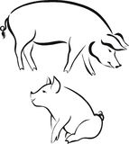 Pigs animals farm Stock Photo