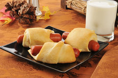 Pigs in a blanket. With a glass of milk Royalty Free Stock Image