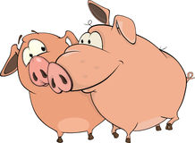 Pigs cartoon Stock Image