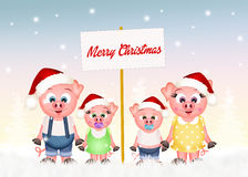 Pigs celebrate Christmas Royalty Free Stock Images