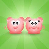 Pigs couple Royalty Free Stock Photos