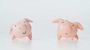 Pigs doll. Two pigs doll in studio Stock Photography