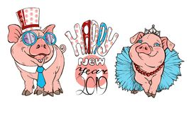 Pigs dressed in costumes, vector illustration. Pigs dressed in costumes and text happy new year, vector illustration vector illustration