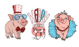 Pigs in festive costumes and lettering. Happy new year, vector illustration royalty free illustration