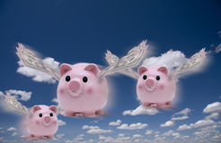 Pigs Fly. Pigs with money wings in flight Stock Photos