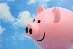 When pigs fly Royalty Free Stock Photography