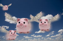 Pigs fly. Pigs in flight with money wings Stock Images
