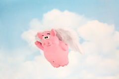 When Pigs Fly. Concept for Achieving the Impossible royalty free stock photography