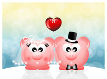 Pigs in love Stock Image
