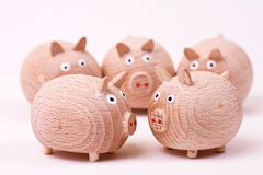 Pigs' meeting stock image