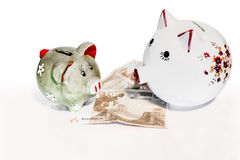 Pigs moneybox. Two pigs must decide what to do with the money saved Stock Images