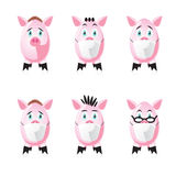 Pigs in protection face mask. Set of six pigs in protection mask. Full editable  illustration Stock Images
