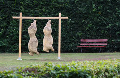 Pigs torsos on the park. Modern art Royalty Free Stock Images
