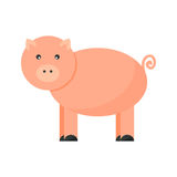 Pigs vector cartoon character. Cute cheerful pig farm character vector. Nature domestic agriculture funny standing mammal. Swine rural meat pork animal  on white Stock Photography