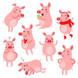Cute vector pigs. Pigs. Vector set with pigs in different poses and emotions Royalty Free Stock Image