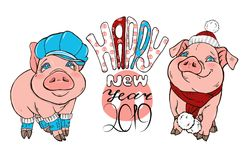 Pigs in winter clothes hat and scarf. Text happy new year, vector illustration stock illustration
