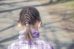 Pigtail girl child disheveled Stock Photography