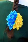 Pigtail z ukraińska flaga barwiącym łękiem Fotografia Royalty Free