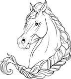 pigtailed的马 免版税库存图片